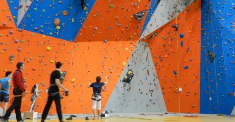 Image - escalade - pôle sportif Léonard de Vinci